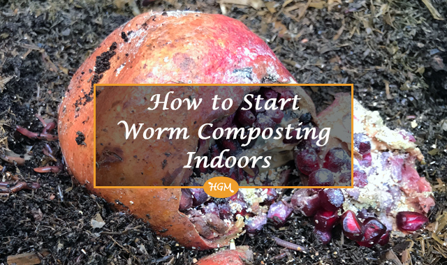 Composting indoors with worms