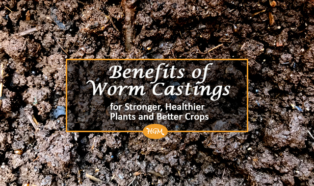 Benefits of Worm castings