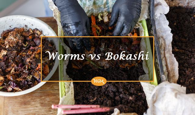 vermicomposting vs bokashi