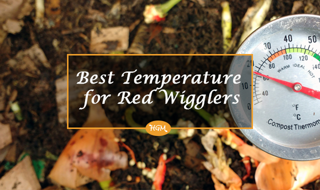 temperature for worm composting