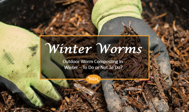 Outdoor worm composting in winter