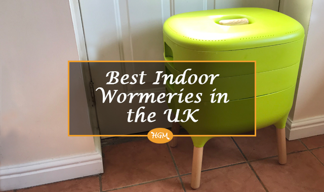 Best indoor wormeries in the UK